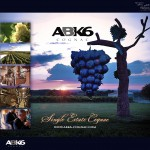 ABK6-SINGLEESTATE-DECOR-V2
